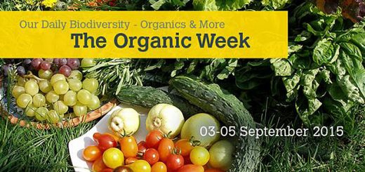 The organic week 3-5 settembre 2015