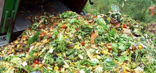 spreco alimentare cibo